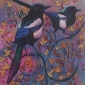 Cole-Daniel-Autumn-Magpies.jpg