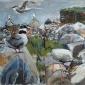 Jones-Kittie-Arctic-Tern-colony,-Shetland.jpg