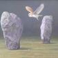 Parry-David-Barn-Owl-at-Avebury.jpg