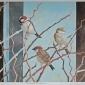 Hooper-Lisa-A-Quarrel-of-Sparrows.jpg