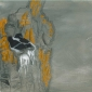 Legg-Wynona-Nesting-Razorbills.jpg
