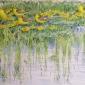 Warren-Michael-Yellow-Wagtails.jpg