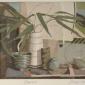Williams-Annie-Bamboo.jpg