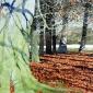 Richmond_Park_Kidney_Wood_copy_1.jpg
