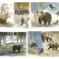 brown_bears_gemma_1.jpg