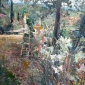 Coates-Tom-Mary Painting in the Balmer's Garden Tuscany.jpg