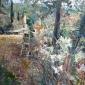 Tom Coates, Mary Painting in the Balmer's Garden Tuscany