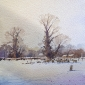 Winter Trees - Peter Cronin.jpg
