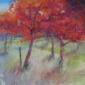 Halstead-Jenny-Seasonal Path.JPG