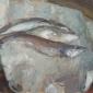 Yeoman-Martin-Venetian Fish.jpg