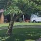 Aggs-Chris-Camper Vans