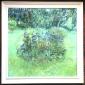 Ambrus-Glenys-September Garden.jpg
