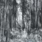 Baldwin-Janine-Cropton Forest I.jpg