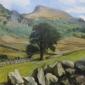 Cumbrian Landscape.jpg