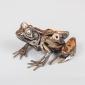 Mead Harriet Spanner Frog-33.jpg