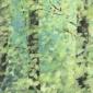 Phillips-Antonia-Woodland-afternoon-150717.jpg