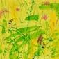 Pollard-Nik-White-tailed-bumble-bee-and-knapweed-3.jpg