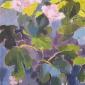 Eve-Pettitt-English-Summer-Garden.jpg
