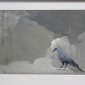 Geffre-Lucie-Blue-bird-framed.jpg