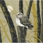 """The Reverist Owl"" Linocut Print by Max Angus"