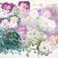'Flower Petals' watercolour painting by Alexander Goudie