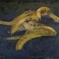 Bernadett Timko Banana Skins