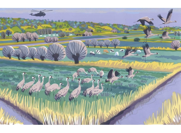 Akroyd-Carry-Level-Cranes-.jpg