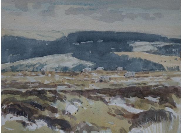 Allbrook-Colin-Winter-on-Dartmoor.jpg