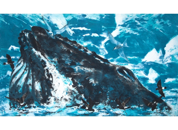 Pearson-Bruce-Antarctic-commensalism.jpg