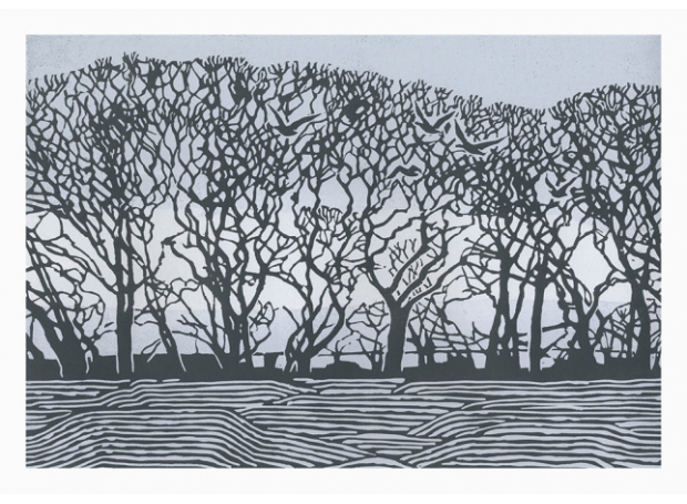 Angus-Max-Stiffkey-Trees.jpg