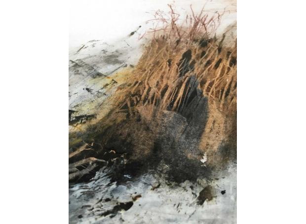 Baker-Robin-Tree-Root-In-Winter.jpg