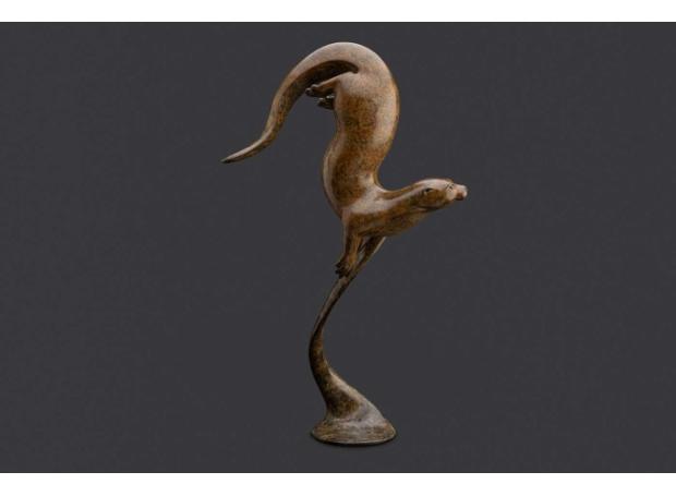 Binder-Adam-Otter-tail-down.jpg