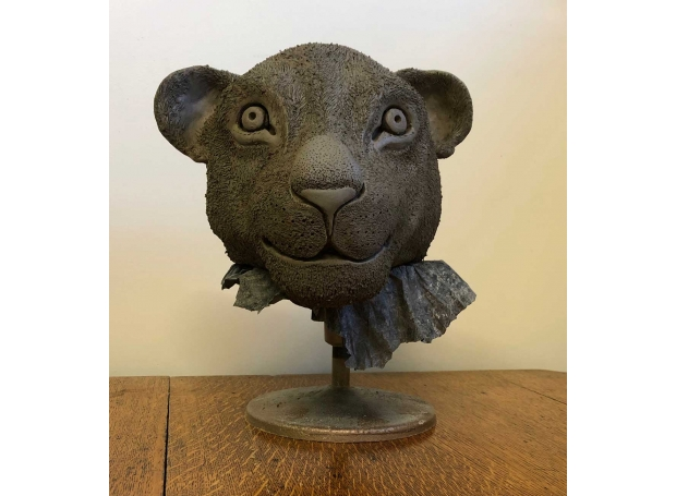 Bowditch-Eliza-Lioness.jpg
