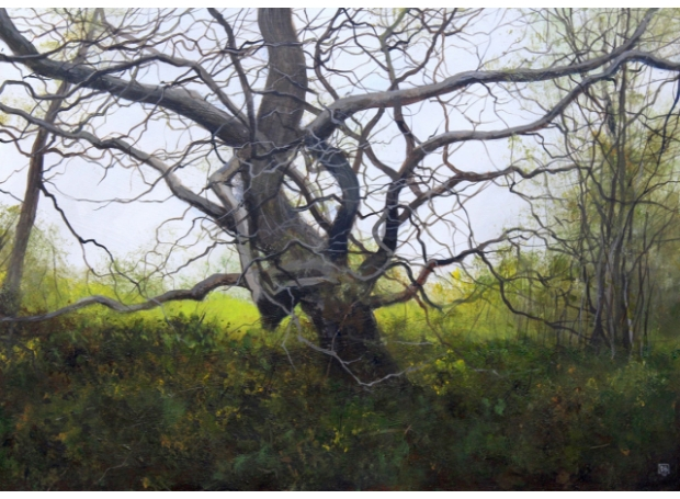 Brammeld-David-Woodland-Walk-(All-Tangled-Up).jpg