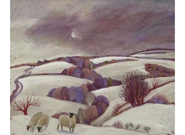 Campion-Sue-Pulverbatch-Winter-Storm.jpg