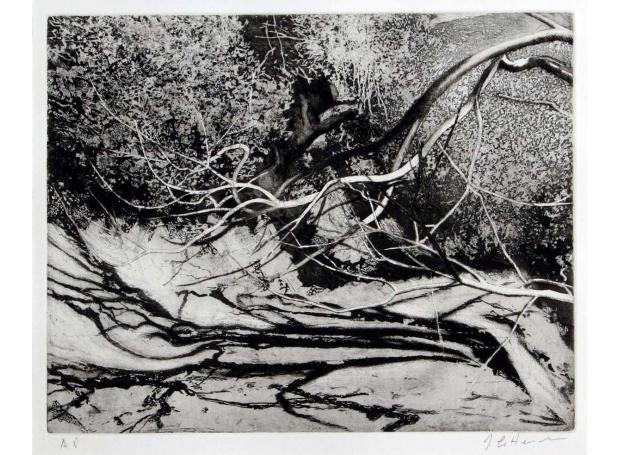 Crittenden-James-Under-The-Chestnut-2.jpg