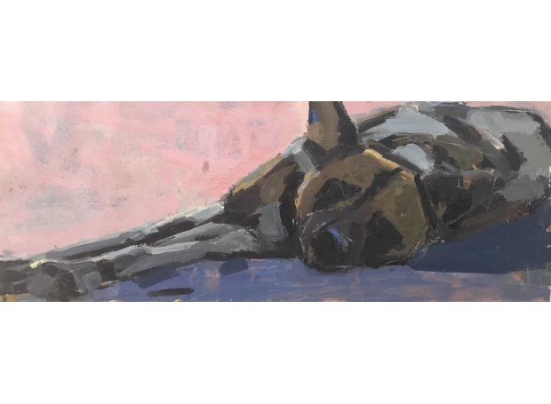 Dobbs-John-Resting-Wild-Dog.jpg