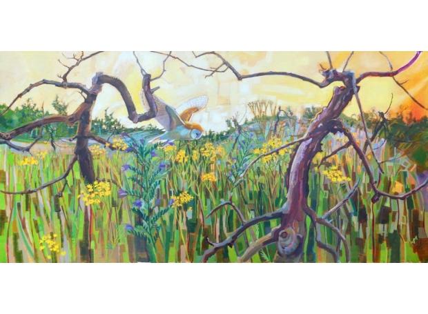 Edwards-Brin-Abandoned-Orchard---Barn-Owl-With-Ragwort.jpg
