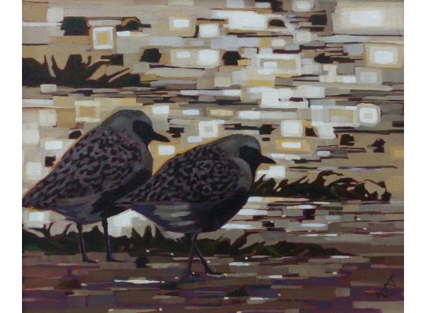 Edwards-Brin-Grey-Plover.jpg