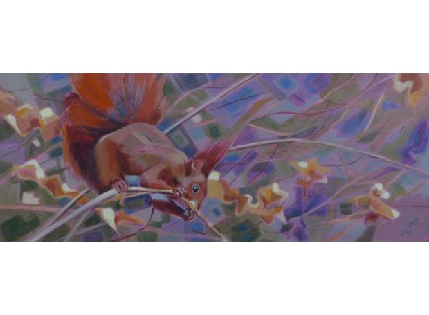 Edwards-Brin-Red-Squirrel.jpg