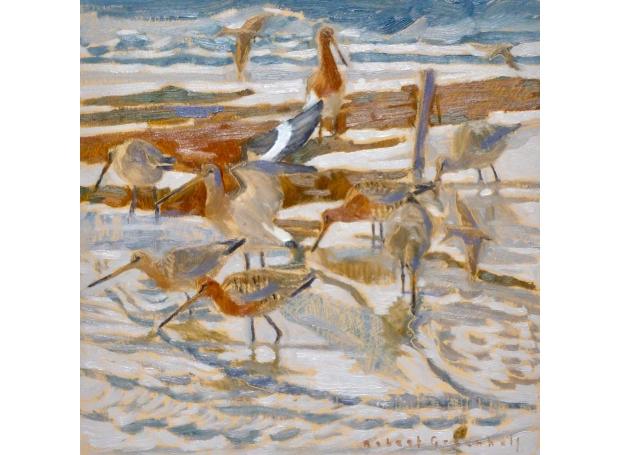 Greenhalf-Robert-Godwits-And-Sand-Martins.jpg