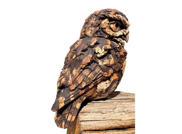 Griffiths-Simon-Little-Owl.jpg