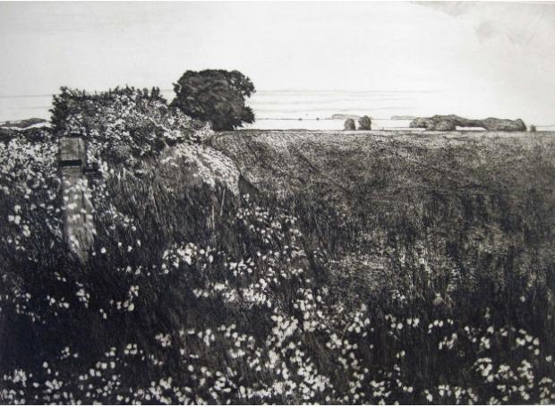 Petterson-Melvyn-Corner of a Rapeseed Field.jpg