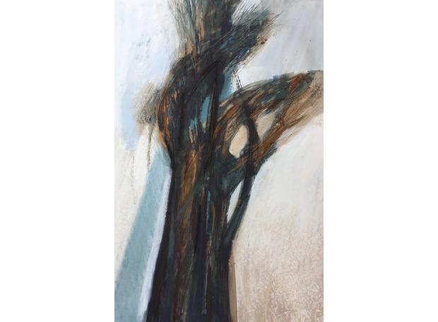 Jeffrey-Jill-Tall-Tree.jpg