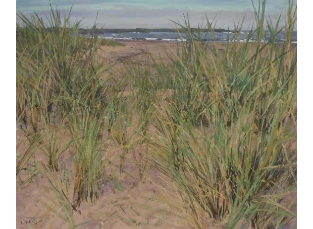 Mulcahy-Bruce-Dune-Grasses.jpg