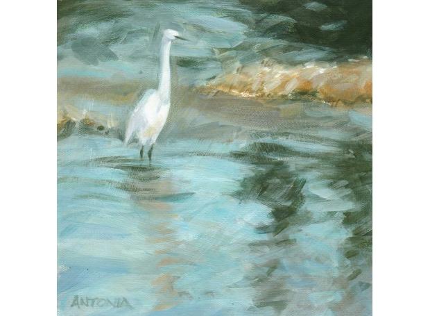 Phillips-Antonia-Morning-egret-II--River-Asker.jpg