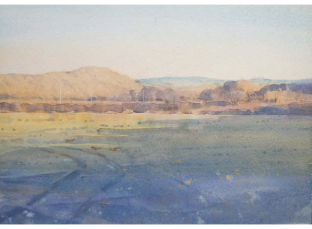 Allbrook-Colin-Late Afternoon, Taw Valley.jpg