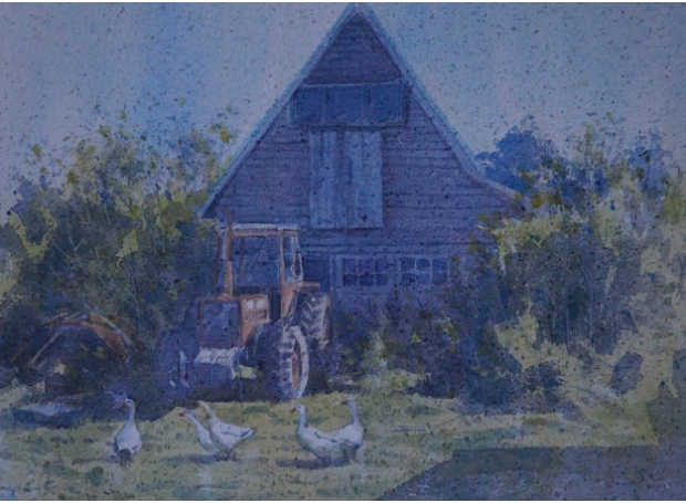 Allbrook-Colin-Geese-and-Tractor.jpg
