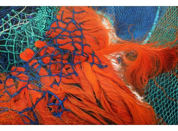 Rudziak-Karl-Camber-Nets.jpg