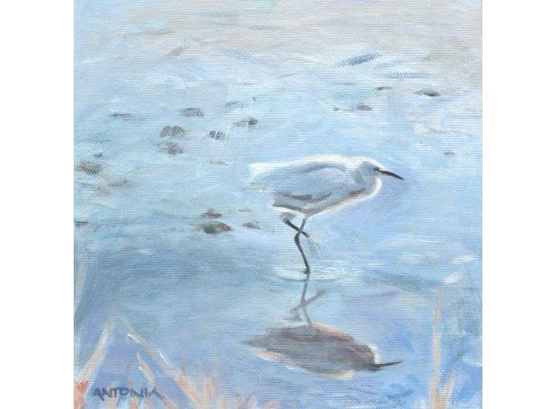 Phillips-Antonia-Morning-egret.jpg